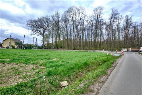 Zazidljivo zemljišče - Prodamo - Przeciszów, Polska - 25 - 800061089-1