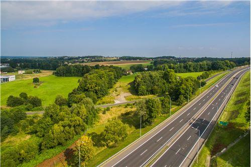 Investment - For Sale - Bielsko-Biala, Poland - 7 - 800061093-8