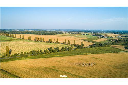 Investment - For Sale - Rudnik, Poland - 11 - 800061057-24