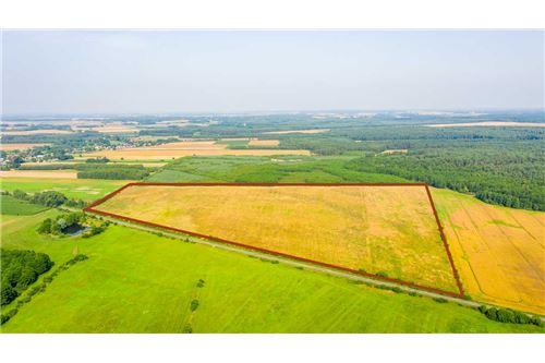 Land - For Sale - Krasna Wieś, Poland - 19 - 810131010-79