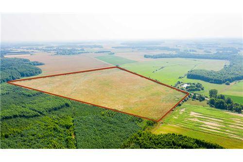 Land - For Sale - Krasna Wieś, Poland - 23 - 810131010-79