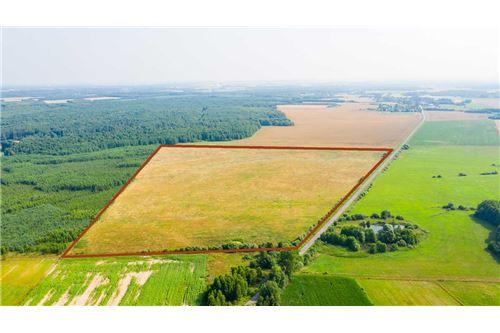 Land - For Sale - Krasna Wieś, Poland - 24 - 810131010-79