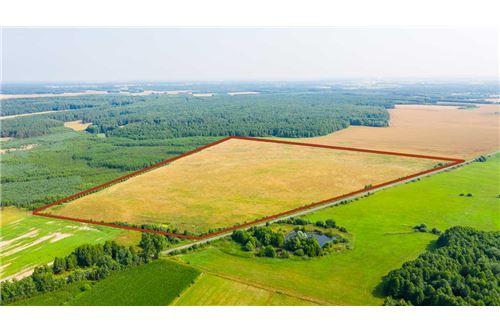 Land - For Sale - Krasna Wieś, Poland - 14 - 810131010-79