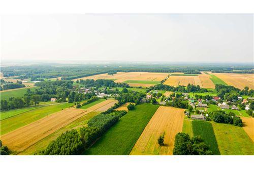 Land - For Sale - Krasna Wieś, Poland - 26 - 810131010-79