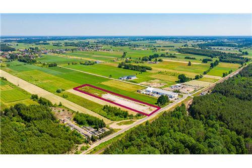 Land - For Sale - Wola Rasztowska, Poland - 12 - 810131010-78