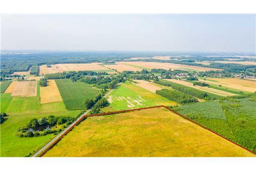 Land - For Sale - Krasna Wieś, Poland - 18 - 810131010-79