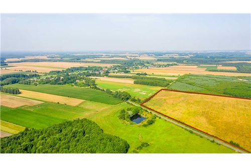 Land - For Sale - Krasna Wieś, Poland - 22 - 810131010-79