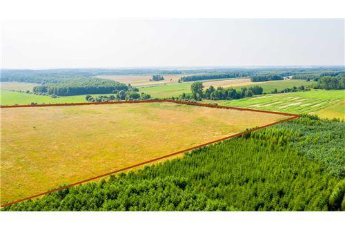 Land - For Sale - Krasna Wieś, Poland - 25 - 810131010-79