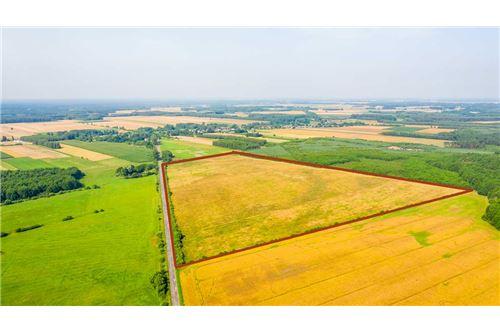 Land - For Sale - Krasna Wieś, Poland - 17 - 810131010-79