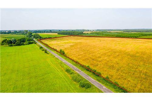 Land - For Sale - Krasna Wieś, Poland - 20 - 810131010-79