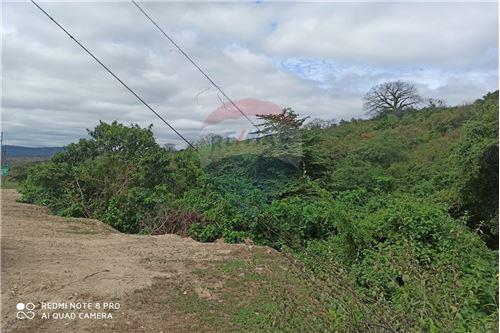 Terreno - De Venta - Montecristi, Ecuador - 6 - 890351021-148