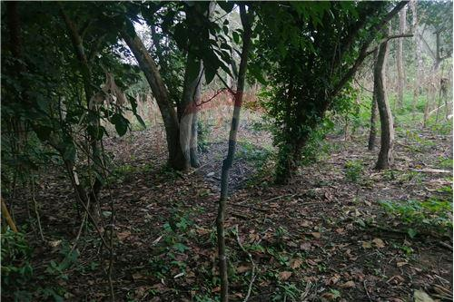 Quinta - De Venta - Montecristi, Ecuador - 31 - 890351026-178