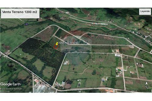Terreno - De Venta - Alangasi, Ecuador - 12 - 890091433-6