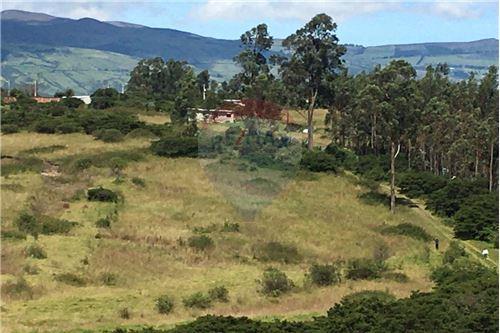 Terreno - De Venta - Alangasi, Ecuador - 17 - 890091433-6