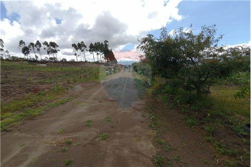 Terreno - De Venta - Tocachi, Ecuador - 40 - 890091433-9