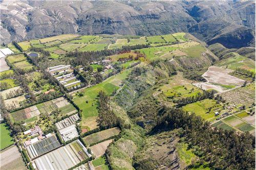 Hacienda - De Venta - Santa Rosa de Cuzubamba, Ecuador - 3 - 890091136-74