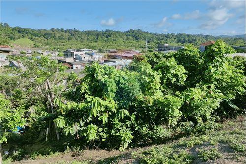 Terreno - De Venta - Muisne, Ecuador - 39 - 890091244-73