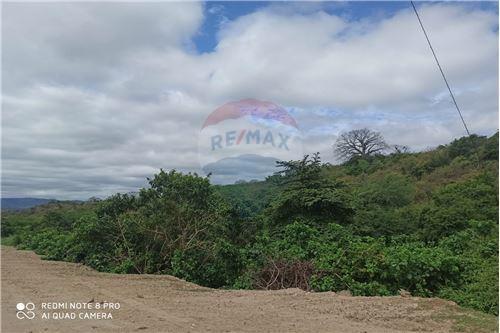 Terreno - De Venta - Montecristi, Ecuador - 5 - 890351021-148