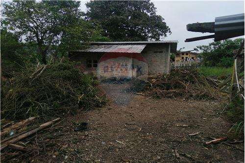 Quinta - De Venta - Montecristi, Ecuador - 37 - 890351026-178