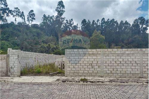 Terreno - De Venta - Rumiñahui, Ecuador - 31 - 890321254-9