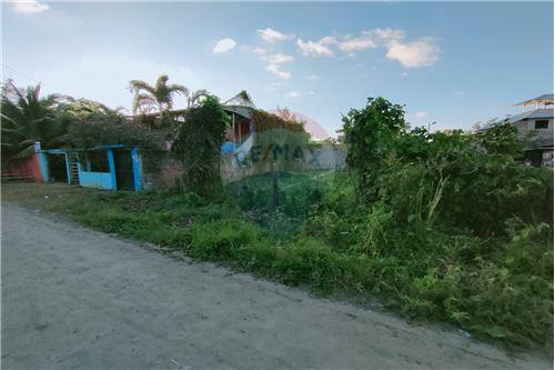 Terreno - De Venta - Mompiche, Ecuador - 8 - 890091244-76
