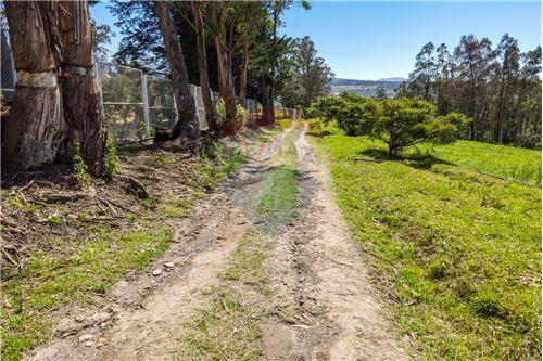 Hacienda - De Venta - Santa Rosa de Cuzubamba, Ecuador - 14 - 890091136-74