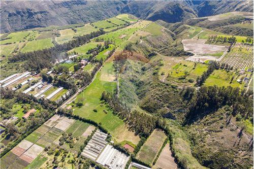 Hacienda - De Venta - Santa Rosa de Cuzubamba, Ecuador - 2 - 890091136-74
