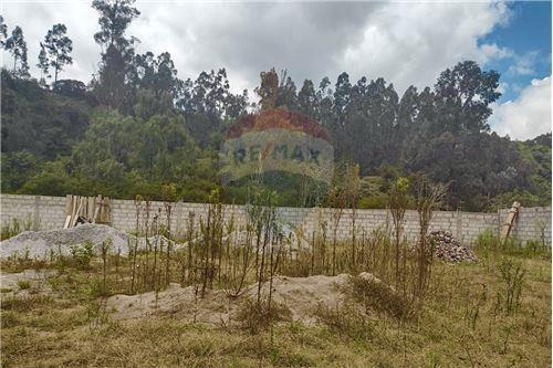 Terreno - De Venta - Rumiñahui, Ecuador - 43 - 890321254-9