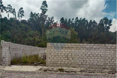 Terreno - De Venta - Rumiñahui, Ecuador - 39 - 890321254-9