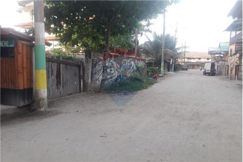 Terreno - De Venta - Mompiche, Ecuador - 25 - 890091244-77