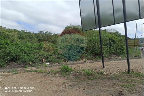Terreno - De Venta - Montecristi, Ecuador - 4 - 890351021-148