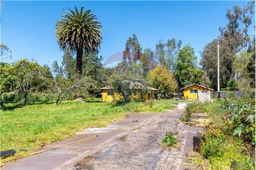 Hacienda - De Venta - Santa Rosa de Cuzubamba, Ecuador - 27 - 890091136-74