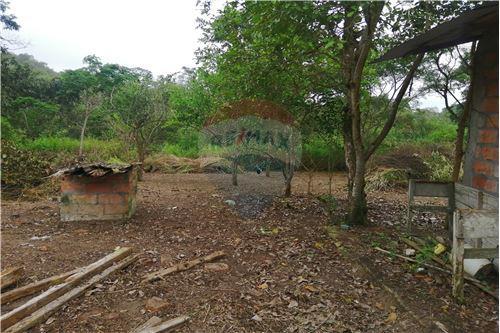 Quinta - De Venta - Montecristi, Ecuador - 40 - 890351026-178