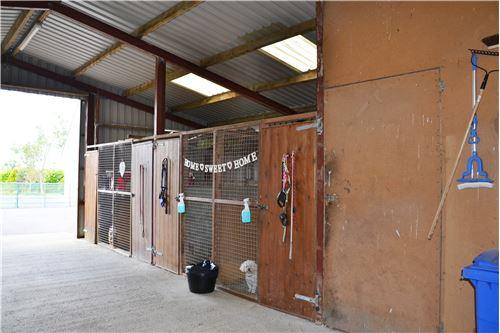 Detached - 出售 - Menlough, Galway - 52 - 990111001-137