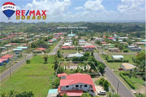 Land - For Sale - Belmopan, Cayo District, Belize - 7 - 901951022-3