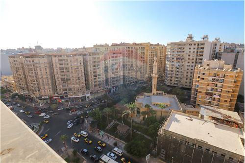 Typical Floor - For Sale - Smouha, Egypt - 15 - 910491048-142