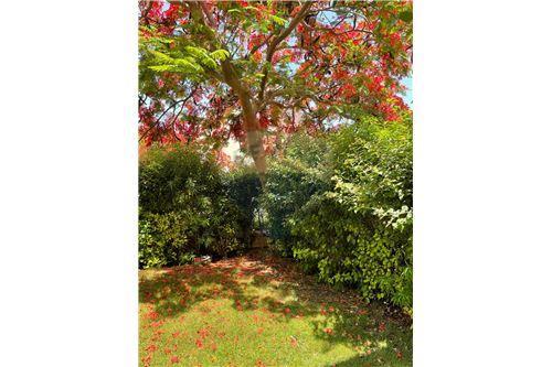 Chalet - For Sale - Hammam, Egypt - 19 - 910591005-90