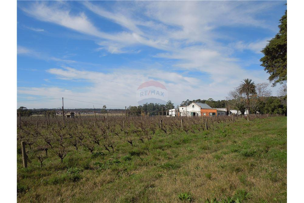 Terreno Venta Located At Av Antonio Lussich Ruta Perimetral Maldonado Maldonado Departamento Maldonado 20000 Uruguay